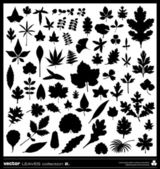 Leaves silhouettes vector — Stock Vector