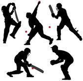 Silueta de deporte de cricket — Vector de stock