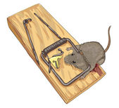 Mouse in a mousetrap. — Stock Vector