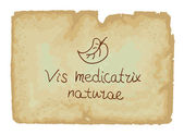 Vis medicatrix naturae - Each person's inner healing power — Wektor stockowy