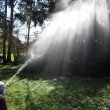 Stock Photo: Spraying water