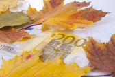 200 euros in autumn — Stock Photo