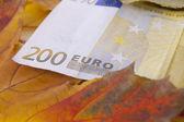 200 euros — Zdjęcie stockowe