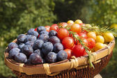 Plums in basket — Stock Photo
