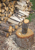 Stack of firewood — Stock Photo