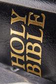 Holy bible — Foto de Stock