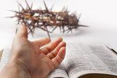 Human hand on bible — Stock Photo