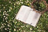 Czarne skórzane Biblii i Cierń korony — Zdjęcie stockowe