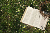 Czarne skórzane biblii i cierń korony na polu kwiat — Zdjęcie stockowe