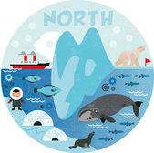 North pole — Vetorial Stock