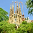 Sagrada Famlia. Barselona. Spain. - Stok fotoraf