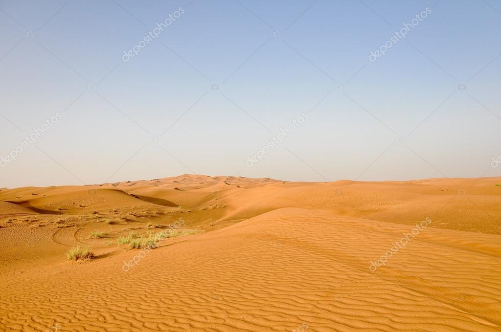 A view of the desert landscape in the summer 2009. — Stock Photo #14917435