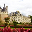Famous castle Chenonceau, view from the garden. Loire Valley, Fr - Стоковая фотография