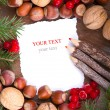Paper bordering with christmas decoration — Stock Photo #14194873