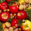 Spruce branches apples and nuts — Stock Photo