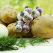 Stock Photo: Basket of fresh tasty new potatoes