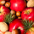 Spruce branches apples and nuts — Stock Photo #14968551