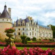 Foto Stock: Famous castle Chenonceau, view from garden. Loire Valley, Fr