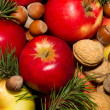 Spruce branches apples and nuts — Stock Photo #16487233