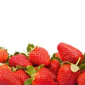 Strawberries isolated over white background — Stock Photo