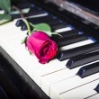 Rose on a piano — Stock Photo #23061696