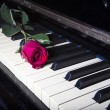 Romantic concept - deep red rose on piano keys — Stock Photo #24276641