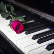 Romantic concept - deep red rose on piano keys — ストック写真 #24276641