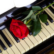 Romantic concept - deep red rose on piano keys — Stock Photo #25216875