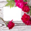 Roses with a card on wooden boards — Stock Photo