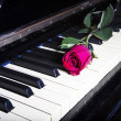 Romantic concept - deep red rose on piano keys — Stock Photo #30177299