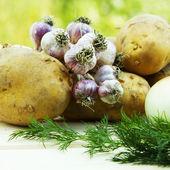 Basket of fresh tasty new potatoes — Stock Photo