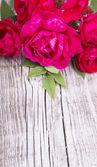 Fundo de madeira com rosas — Foto Stock