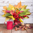 Stock Photo: Bouquet of autumn flowers