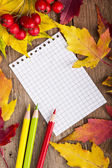 Colorful autumn template made of foliage and the piece of blank — Stock Photo