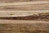 Textura orgánica — Foto de Stock