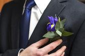 Boutonniere of irises — Stock Photo