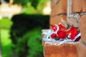 Flowers on the bricks — Stockfoto