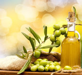 Olio e olive — Stock Photo