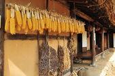 Korean traditional village house — Stock Photo