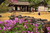 Korean traditional village house — Foto Stock