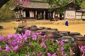 韩国传统村屋 — 图库照片
