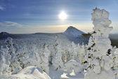 Montagne hivernale — Photo