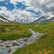 Altai mountains — Stock fotografie