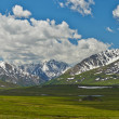 Altai mountains — 图库照片