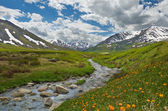 Altai mountains — Foto Stock