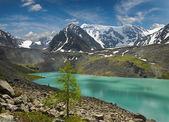 Montagna lago — Foto Stock