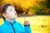 Kind bläst seine dandellion saatgut — Stockfoto