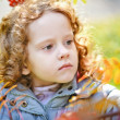 Portrait of alittle girl in autumn park — Stock Photo