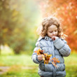 Little girl playing with golden leaves in autumn park — Stock Photo