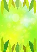 Leaves green bokeh. Spring background. — Stock Vector